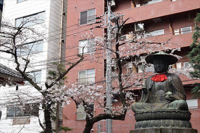 新宿三丁目界隈で飲酒しながら花見ができる場所を逆に教えてください。泣。